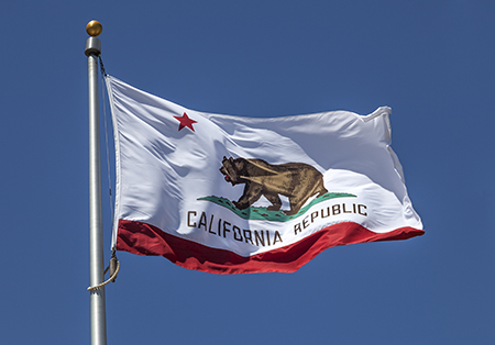 California Dual Eligibles Project