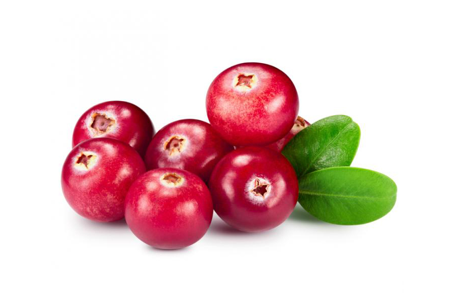 Cranberries Help Urinary Tract Infections